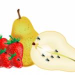 Fruchtfliegen – Was mach ich nur?