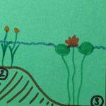 """Projekt """"Miniteich""""  – mehr Wasser für meine Terrasse"""
