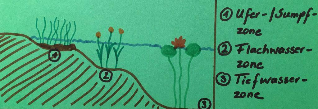 Zonen (Mini-)Teich